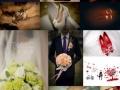 承接株洲地区婚礼跟拍。