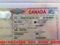 加拿大旅游签证办理通过