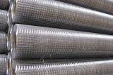 农业养殖不锈钢电焊网 鸽笼不锈钢电焊网 鑫广丝网