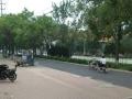 小王庄路口北行200米路 其他 100平米