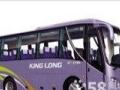 惠州包车惠阳租车大巴中巴商务车旅游包车工厂员工接送