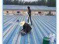 奇妙防水:不破坏基面、不砸瓷砖,质保10年