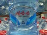 娃哈哈 伯乐山泉桶装水硚口送水中心