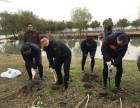上海企业植树活动企业团建户外娱乐种树CS射箭划船