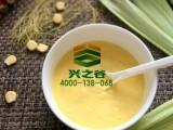 纯天然大麦若叶减肥青汁粉 OEM代加工瘦身青汁粉 青汁代餐粉