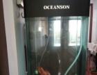 红鹦鹉和鱼缸(海子缸)