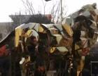 郑州较火展览道具机械大象出租出售大象来了