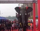 仿真机械大象租赁 雨屋