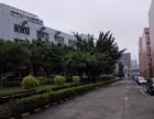 观澜高新科技园旁3楼4楼各1200平米招租有装修