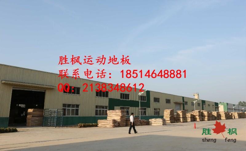 浙江篮球木地板厂家,嘉兴胜枫篮球专用木地板价格