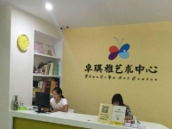 深圳市卓琪雅艺术中心钢琴小提琴古筝书法国画 动漫