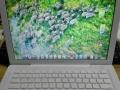 苹果macbook 大屏双系统笔记本转让