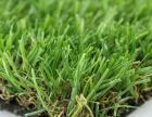 人造草坪厂家现货直销幼儿园人造草坪发货快捷便利速度快