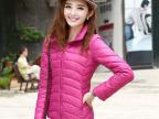 2014秋季新款韩版羽绒服纯色拉链短款羽绒服女装外套 厂家批发