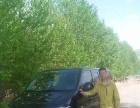 16年新车,九坐凯路威 承包青海省内外旅游包车
