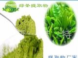 高品质茶多酚98% 纯天然绿茶提取物 绿茶粉 抗氧化 抗辐射