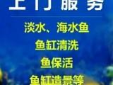 北京專業清洗魚缸 護理魚缸 承接維護淡海水等各種類型魚缸