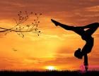 湛江哪里有瑜伽教练培训 罗曼瑜伽