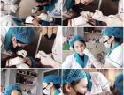 惠州系统全面的微整形针剂课程 丽人国际医美培训学院