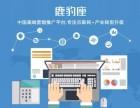 中国网络优化公司排名 网络优化公司哪家好
