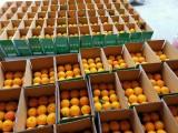 水果行业轻松转型教你来创业