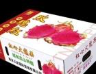 三亚纸箱厂 订做火龙果纸箱 三亚菠萝纸箱 不二之选