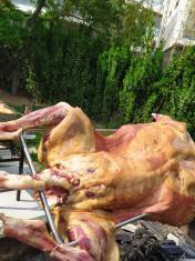 上门烤全羊,价格公道,味道纯正,您在哪吃,我去哪烤