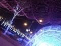 北京腾辉做良心圣诞节日灯绕树灯瀑布灯串灯LED灯装饰价格合理