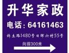 升華家政一年底有計劃的安排保姆一上海統一服務