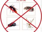 灭鼠,灭蟑,灭白蚁,有害生物防治