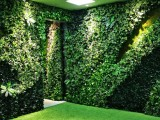 室内绿化装饰装修