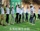 深圳宝安拓展基地松湖生态园经典项目推荐
