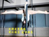 青羊区府南新区星秀舞蹈 实现舞蹈梦想 就在星秀舞蹈培训学校