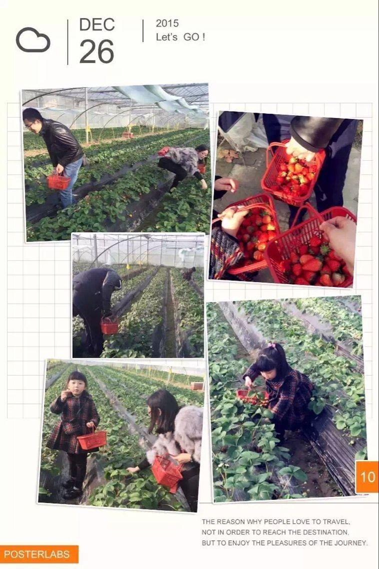 上海周边农家乐旅游 挖野菜采草莓 喂山羊钓大鱼