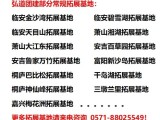 杭州西湖定向团建和杭州花圃 茅家埠户外团建拓展