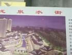 东平街道 黄金地段 商业街卖场 12.1万平平米