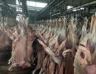 青岛英翰食品牛羊肉白条供应
