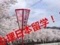 日本留学免费办,17年您的留学梦想,我们帮您实现。