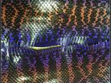 强力推荐 彩色凹凸蛇纹皮革 彩色蛇纹印花