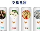 天津汇港农产品现货临沂招商,提供个人开户、创业指导