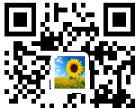 太原电脑网络营销培训淘宝网银网店网站美工设计包教包会