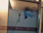 专业玻璃贴膜 磨砂膜 隔热膜 防爆膜 LOGO腰线