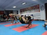 成都成人学武术散打 搏击请到承武门搏击健身俱乐部