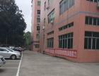 上雪科技城一楼400平米厂房仓库出租