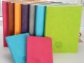 温州记事本定制 定制笔记本LOGO 商务办公礼品定制