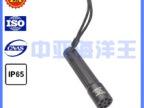 供应Jw7300微型防爆电筒上海中亚海洋王厂家直销