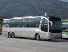 广州到嘉兴的汽车哪里有客车坐票价多少