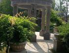 欧式风情别墅 独栋 双拼 联排 大面积赠送花园 露台