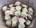 19朵彩色玫瑰