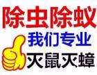 承接武汉酒店 餐饮 商超等场所灭鼠 灭蟑螂 除虫业务